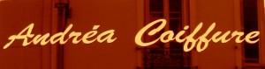 Andrea Coiffure Google Business View. Visite virtuelle a 360º sur Paris, Le Plessis Robinson, Sceaux, Boulogne Billancourt, Clamart, Santa Barbara